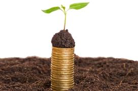 Grüne Geldanlagen